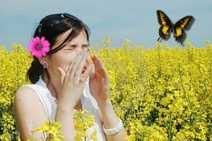 truc contre allergies