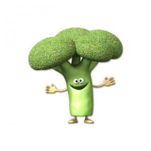 Legumes bon pour la santé : le brocoli