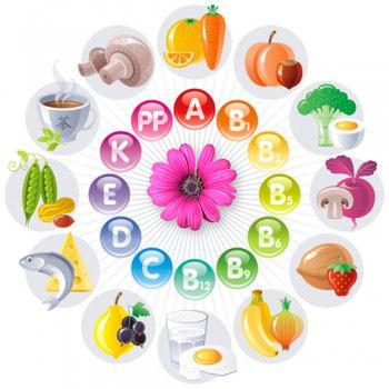 les differentes vitamines